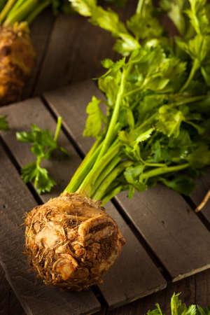 celeriac: Raw Organic Celery Root Ready to Cut Stock Photo