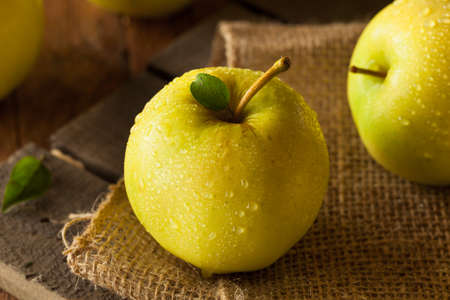 golden apple: Raw Organic Golden Delicious Apples Ready to Eat