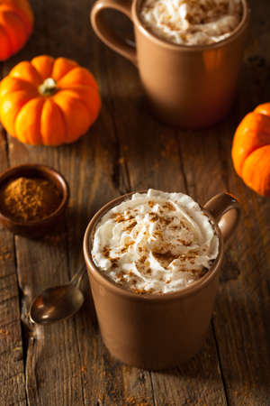 spice: Homemade Pumpkin Spice Latte with Cream and Cinnamon Stock Photo