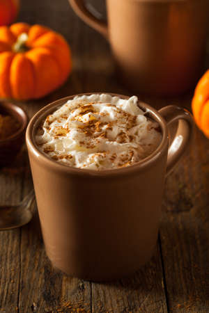Homemade Pumpkin Spice Latte with Cream and Cinnamon Reklamní fotografie
