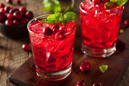 Domowe Cocktail podpity Cranberry wódka i Mint