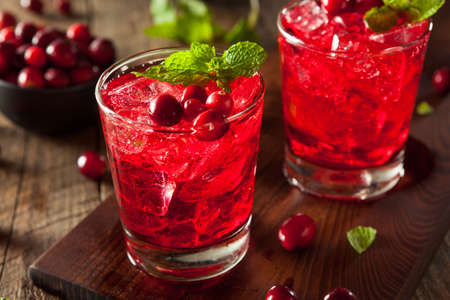 cocktail: Homemade Boozy Cranberry Cocktail with Vodka and Mint