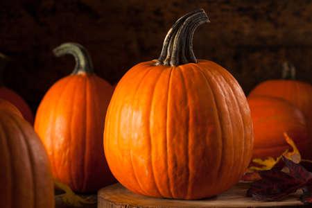 dynia: Raw Organic Pie Pumpkins Gotowy do użycia