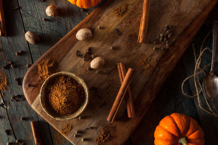 pumpkin pie: Organic Raw Pumpkin Spice with Cinnamon Allspice Nutmeg and Ginger Stock Photo