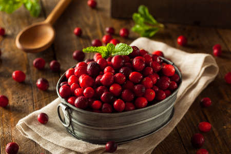 Raw Organic Red Cranberries in a Bowl Stock Photo