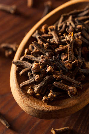 cloves: Raw Brown Organic Cloves Ready to Use
