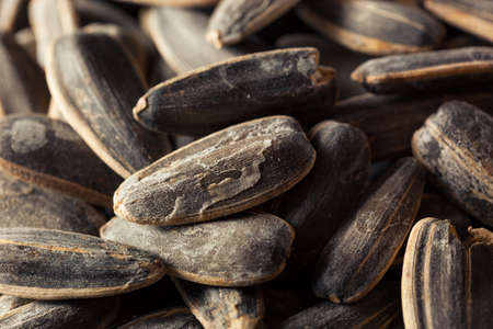 sunflower seeds: Organic Salted and Roasted Sunflower Seeds Stock Photo