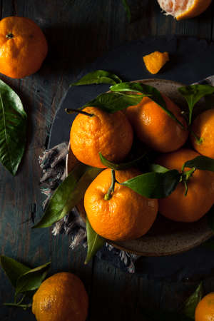 Raw Organic Satsuma Oranges with Green Leaves Standard-Bild