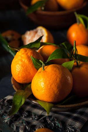 seedless: Raw Organic Satsuma Oranges with Green Leaves Stock Photo