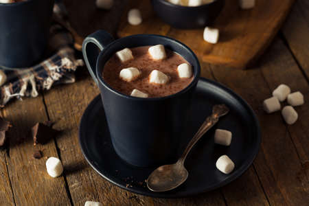 hot beverage: Homemade Warm Hot Chocolate with White Marshmallows Stock Photo