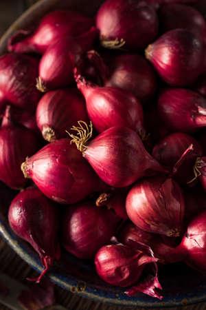 cebollas: Orgánicos Red Pearl cebollas en un tazón de fuente Foto de archivo