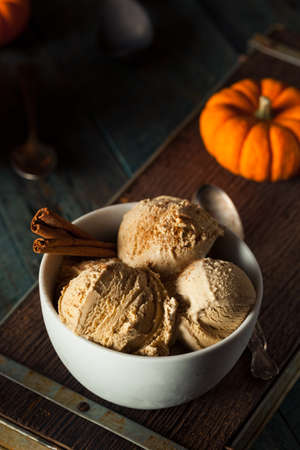 nonfat: Homemade Pumpkin Pie Ice Cream with Cinnamon