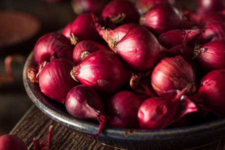 onion red: Org�nicos Red Pearl cebollas en un taz�n de fuente Foto de archivo