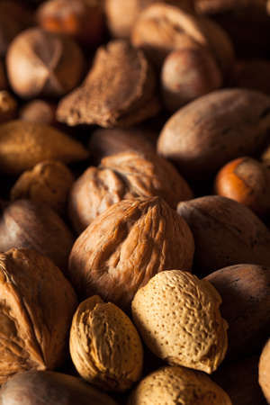 pecans: Assorted Mixed Organic Nuts with Walnuts Almonds and Pecans Stock Photo
