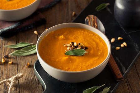 zanahorias: Sopa de jengibre hecha en casa de la zanahoria con nueces tostadas pino