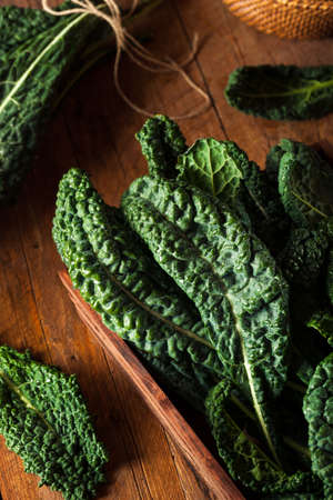 Organic Green Lacinato Kale Ready to Eat Banco de Imagens - 49621739