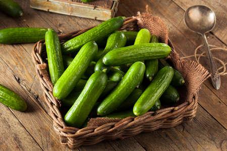 Raw Organic Mini Baby Cucumbers Ready to Eat