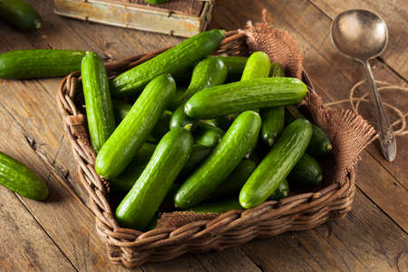 cucumber salad: Raw Organic Mini Baby Cucumbers Ready to Eat