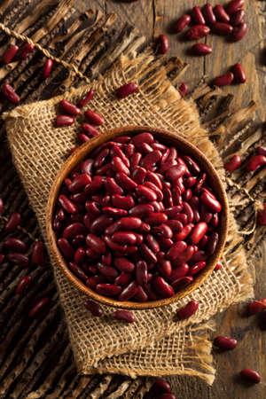frijoles rojos: Habas de riñón sin procesar roja orgánicos en un recipiente