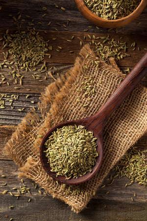 finocchio: raw organic fennel Seed Ready to Use