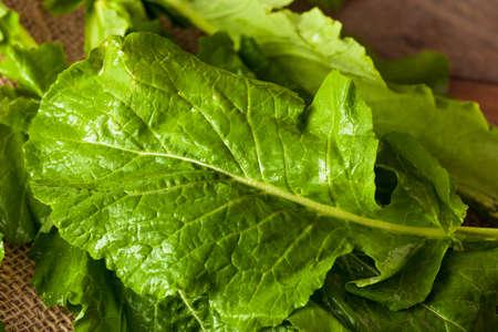 salad greens: Raw Organic Turnip Greens Ready to Eat