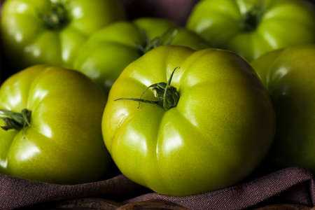 Raw Organic Green Tomatoes Ready to Eat