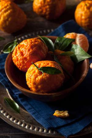 nugget: Raw Organic Gold Nugget Mandarin Oranges Ready to Eat