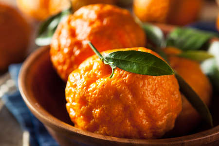 Raw Organic Gold Nugget Mandarin Oranges Ready to Eat