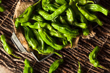 Raw Organic Green Shashito Peppers Ready to Cook With