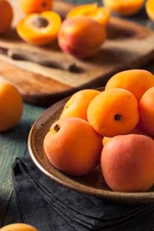 apricot kernel: Raw Organic Yellow Apricots Ready to Eat