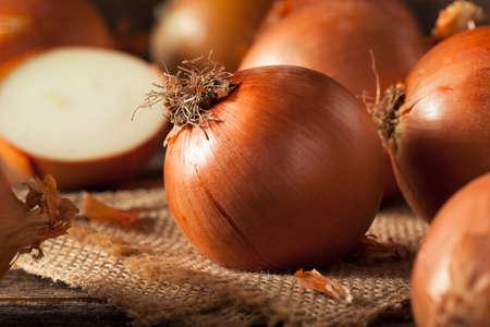 cebolla: Las cebollas amarillas prima orgánica listo para cocinar Foto de archivo