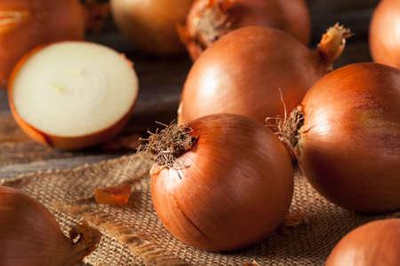 cebollas: Las cebollas amarillas prima orgánica listo para cocinar Foto de archivo
