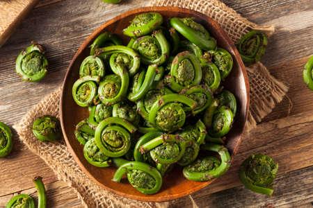 fern fiddlehead: Raw Organic Green Fiddlehead Ferns Ready for Cooking