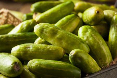 perishable: Raw Green Organic Tindora in a Basket Stock Photo