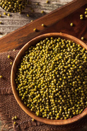 protein crops: Raw Organic Green Mung Beans in a Bowl