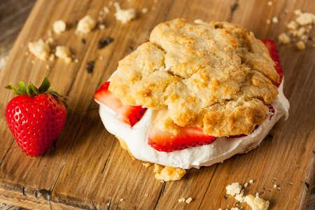 postre: Casera torta de frutas con crema batida Listo para comer Foto de archivo