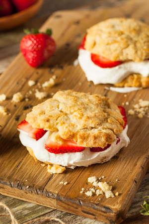 shortcake: Homemade Strawberry Shortcake with Whipped Cream Ready to Eat Stock Photo