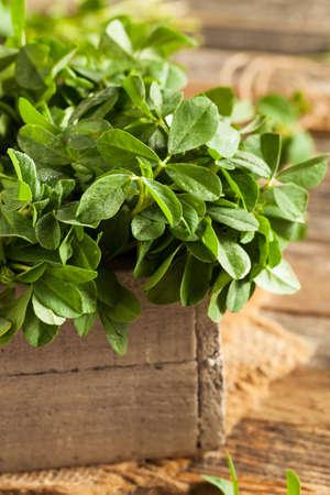 methi: Raw Organic Fenugreek Methi Leaves in a Basket