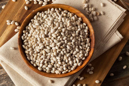 large bean: Raw Organic White Navy Beans in a Bowl