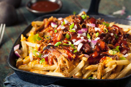 pulled: Homemade BBQ Pulled Pork French Fries with Sauce