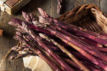 heirloom: Raw Organic Purple Asparagus Spears Ready for Cooking