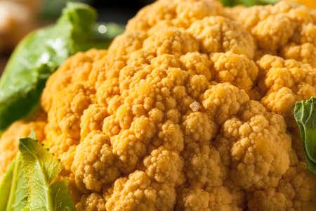 cruciferous: Raw Organic Orange Cauliflower with Green Leaves Stock Photo