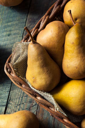 yellow stem: Raw Organic Green and Brown Bosc Pears Ready to Eat