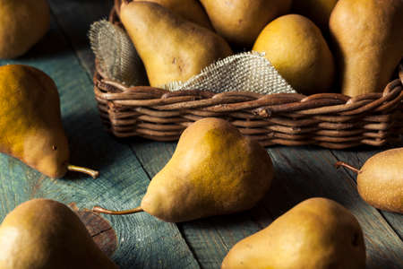 pera: Raw Organic Green and Brown Bosc Pears Ready to Eat