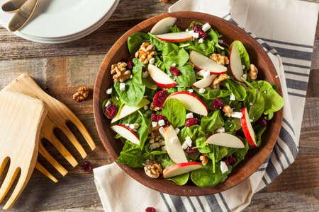 Homemade Autumn Apple Walnut Spinazie Salade met Kaas en Cranberries Stockfoto