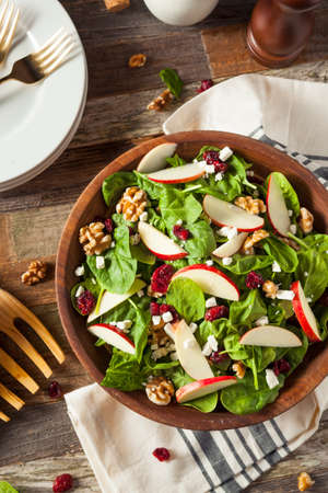 Homemade Autumn Apple Walnut Spinach Salad with Cheese and Cranberries Imagens
