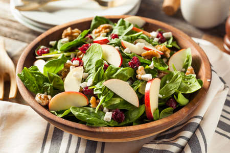 Homemade Autumn Apple Walnut Spinach Salad with Cheese and Cranberries Archivio Fotografico