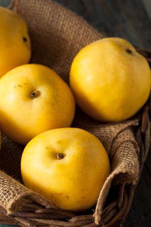 asian produce: Raw Organic Yellow Asian Apple Pears Ready to Eat
