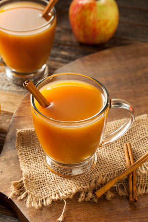 Warm Hot Apple Cider Ready to Drink in Autumn