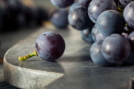 Raw Organic Purple Concord Grapes Ready for Cooking Stock Photo